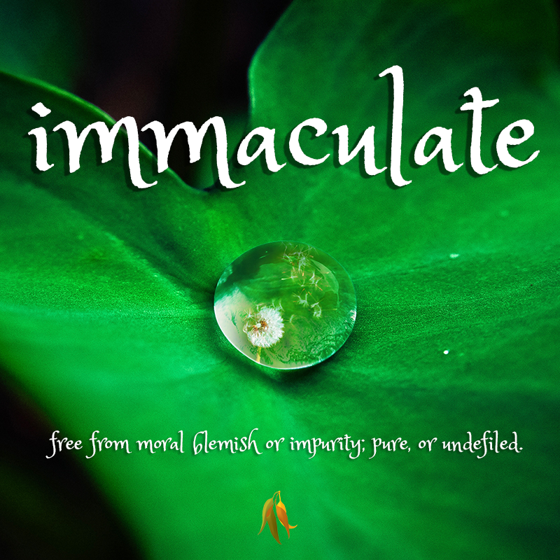 Beautiful words - immaculate - free from moral blemish or impurity; pure, or undefiled