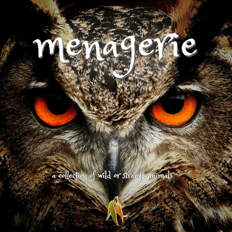 Beautiful words - menagerie - a collection of wild or strange animals