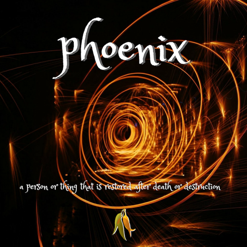 Beautiful words - phoenix - a person or thing that is restored after death