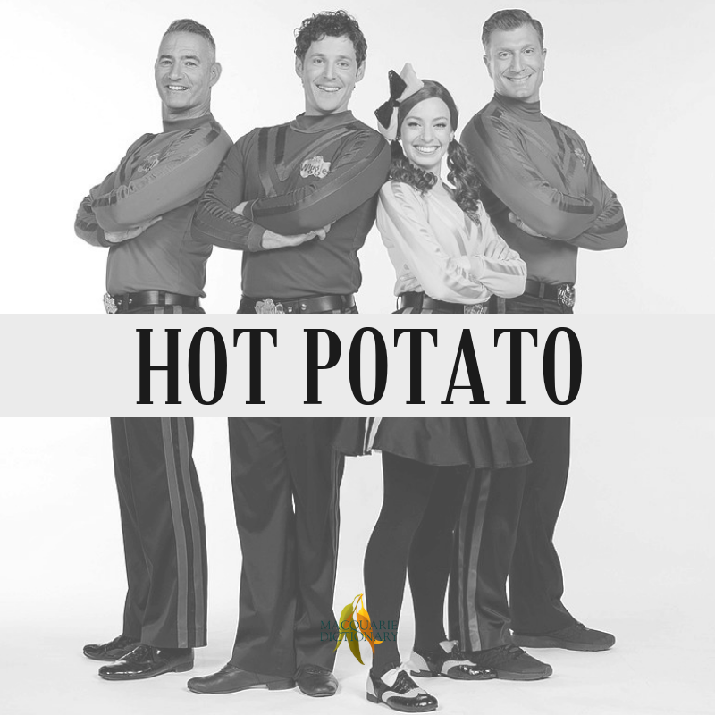 Macquarie Dictionary-hot potato-a risky situation, difficult person, or any other thing which needs careful handling.