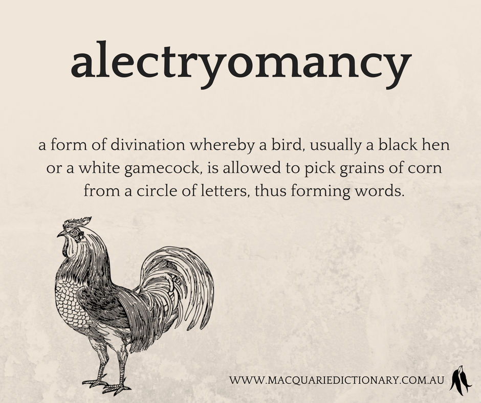 alectryomancy	a form of divination whereby a bird, usually a black hen or a white gamecock, is allowed to pick grains of corn from a circle of letters, thus forming words.