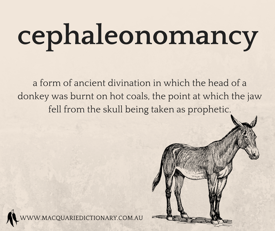 cephaleonomancy	a form of ancient divination in which the head of a donkey was burnt on hot coals, the point at which the jaw fell from the skull being taken as prophetic.