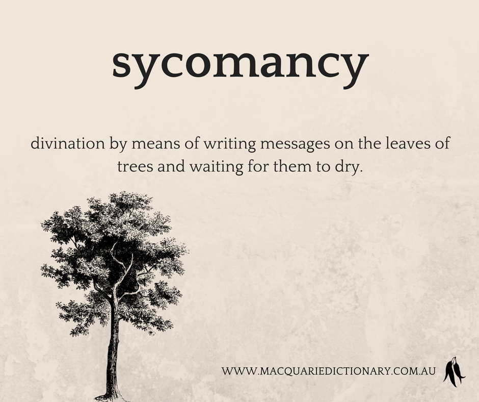 sycomancy	divination by means of writing messages on the leaves of trees and waiting for them to dry.