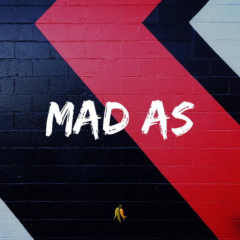 Macquarie Dictionary-Mad as phrases