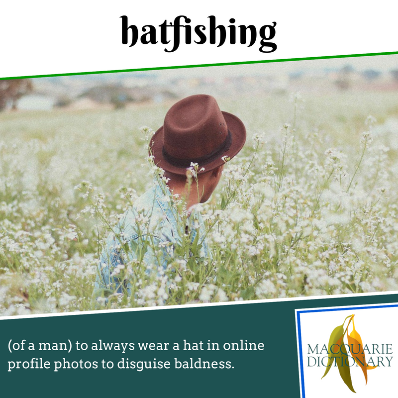 Macquarie Dictionary new words - hatfishing - (of a man) to always wear a hat in online profile photos to disguise baldness.
