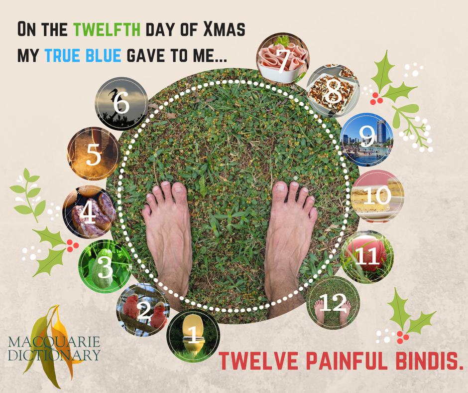 12 days of Aussie Christmas - twelve painful bindis