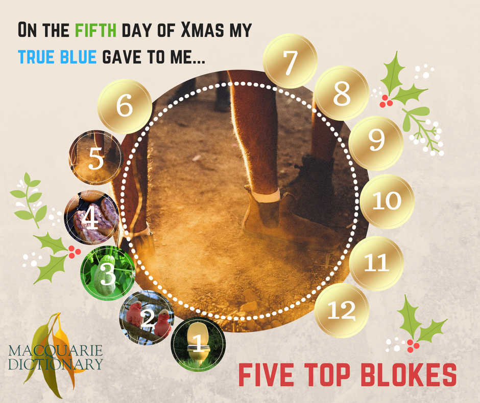 12 days of Aussie Christmas - five top blokes