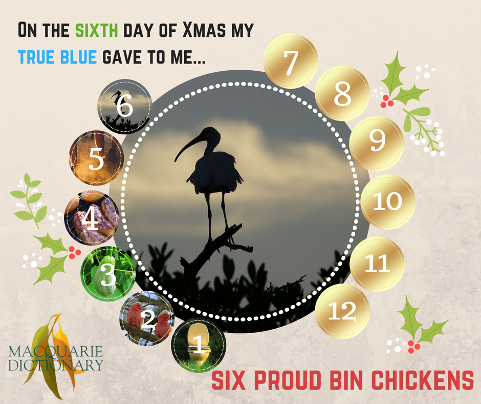 12 days of Aussie Christmas - six proud bin chickens
