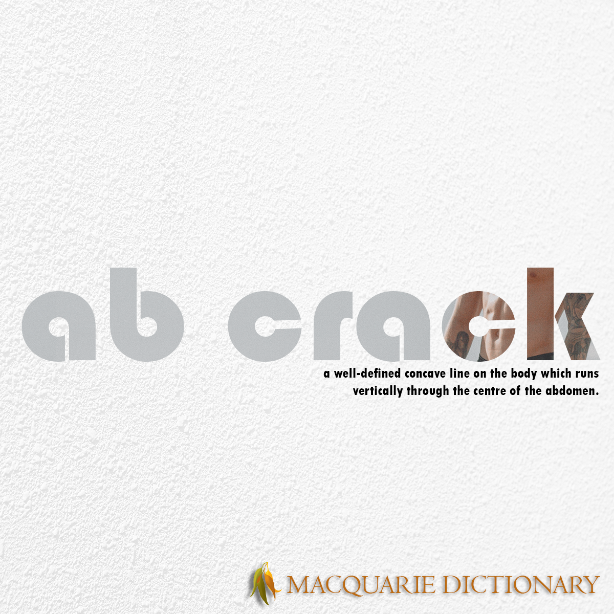Image of Macquarie Dictionary Word of the Year - ab crack - a well-defined concave line on the body which runs vertically through the centre of the abdomen.