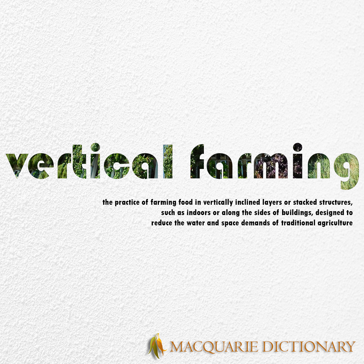 Image of Macquarie Dictionary Word of the Year - vertical farming - the practice of farming food in vertically inclined layers or stacked structures, such as indoors or along the sides of buildings, designed to reduce the water and space demands of traditional agriculture.