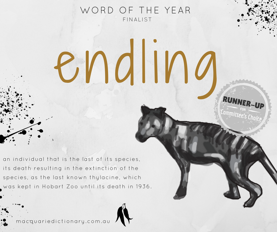 Macquarie Dictionary Word of the Year 2017 - endling - an individual that is the last of its species,  its death resulting in the extinction of the species, as the last known thylacine, which was kept in Hobart Zoo until its death in 1936.