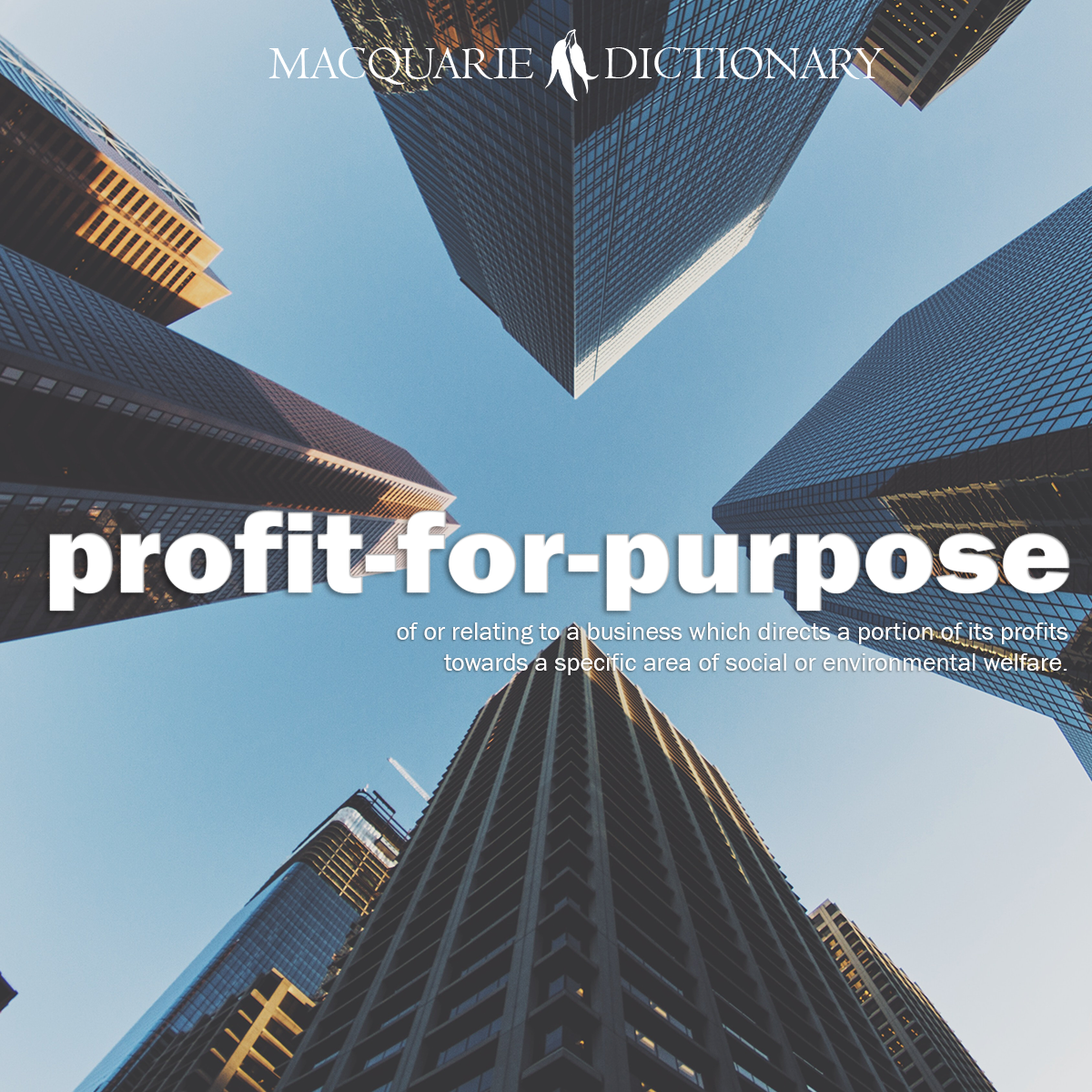 profit-for-purpose - of or relating to a business which directs a portion of its profits towards a specific area of social or environmental welfare: a profit-for-purpose organisation; the profit-for-purpose sector.