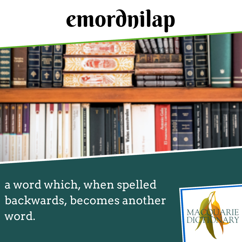 Macquarie Dictionary new words - emordnilap - a word which, when spelled backwards, becomes another word.