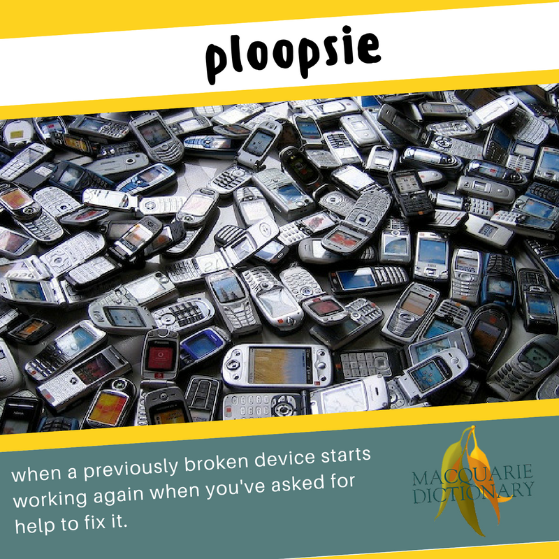 Macquarie Dictionary new words - ploopsie - when a previously broken device starts working again when you've asked for help to fix it.