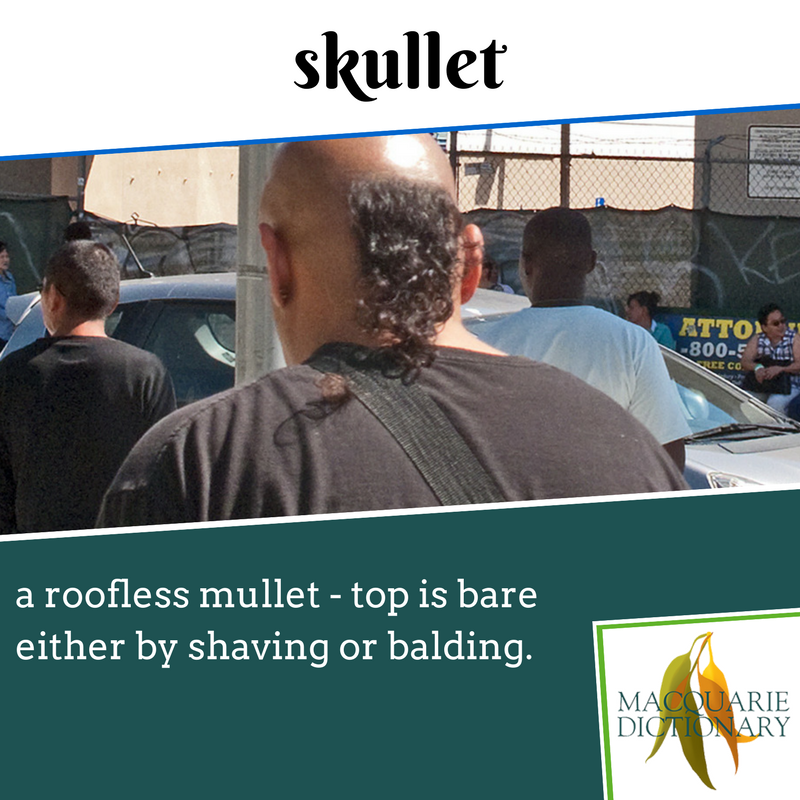 Macquarie Dictionary new words - skullet - a roofless mullet - top is bare either by shaving or balding.