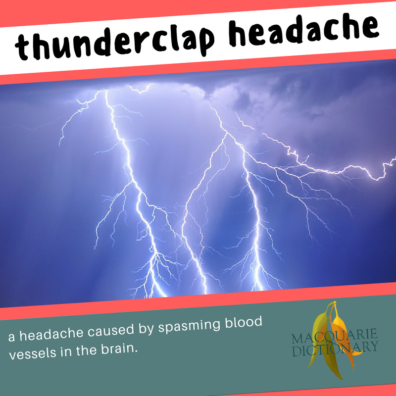 Macquarie Dictionary new words thunderclap headache a headache caused by spasming blood vessels in the brain