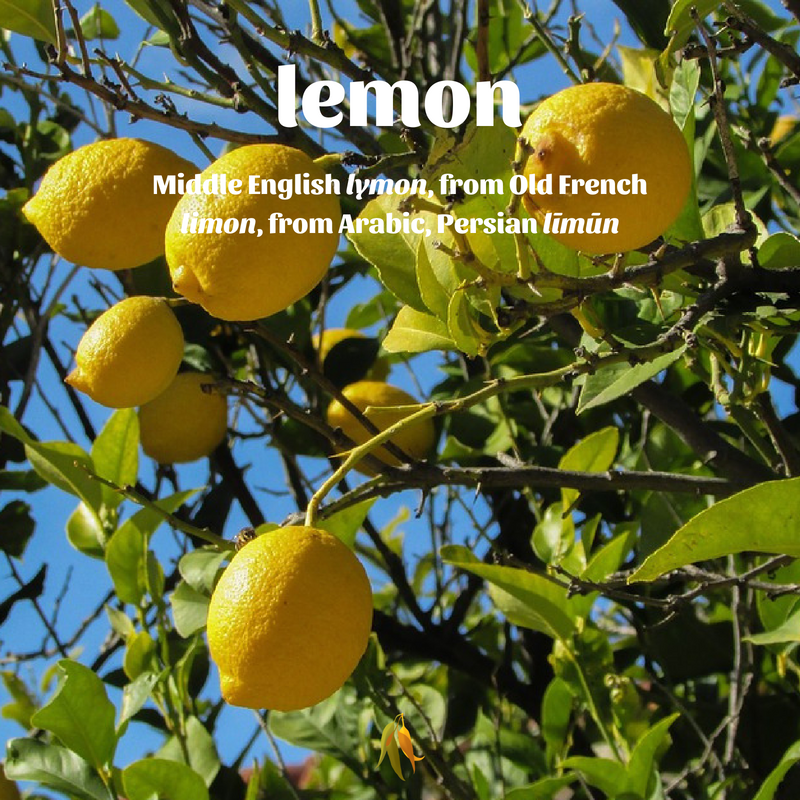 Macquarie Dictionary well travelled words lemon - Middle English lymon, from Old French limon, from Arabic, Persian līmūn