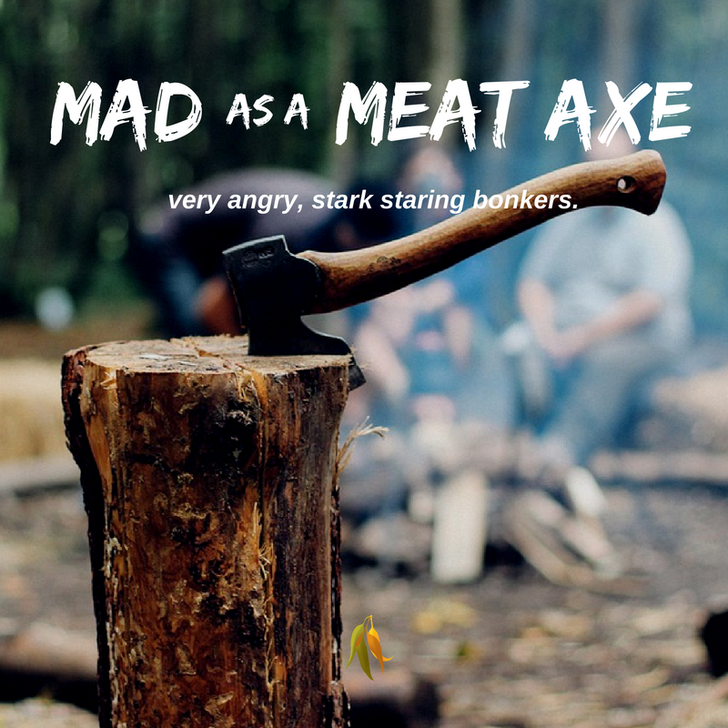 Macquarie Dictionary-Mad as an axe - very angry, stark staring bonkers