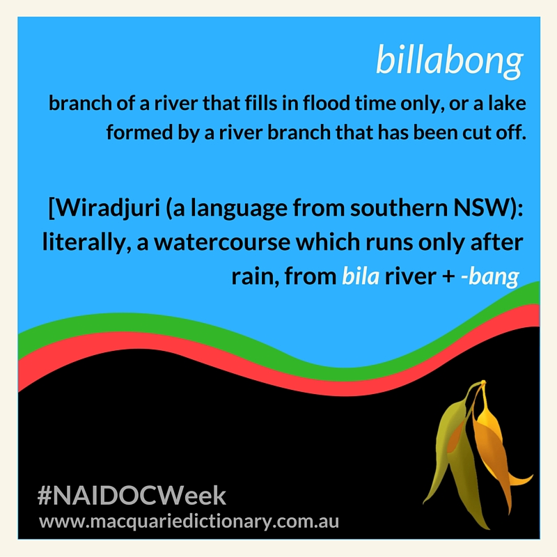 branch of a river that fills in flood time only, or a lake formed by a river branch that has been cut off  [Wiradjuri (a language from southern NSW): literally, a watercourse which runs only after rain, from bila river + -bang