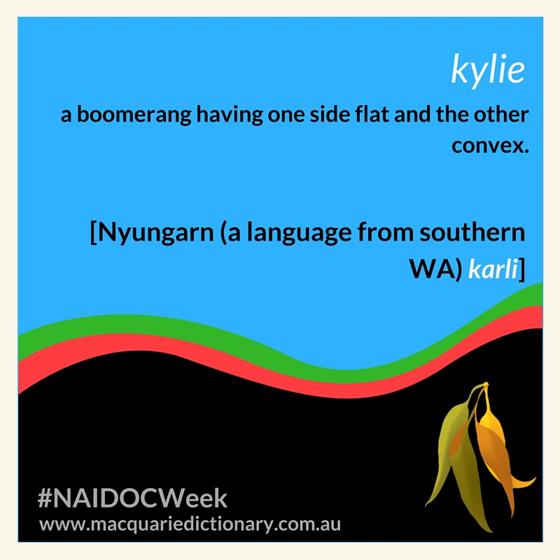 a boomerang having one side flat and the other convex. [Nyungarn (a language from southern WA) karli]
