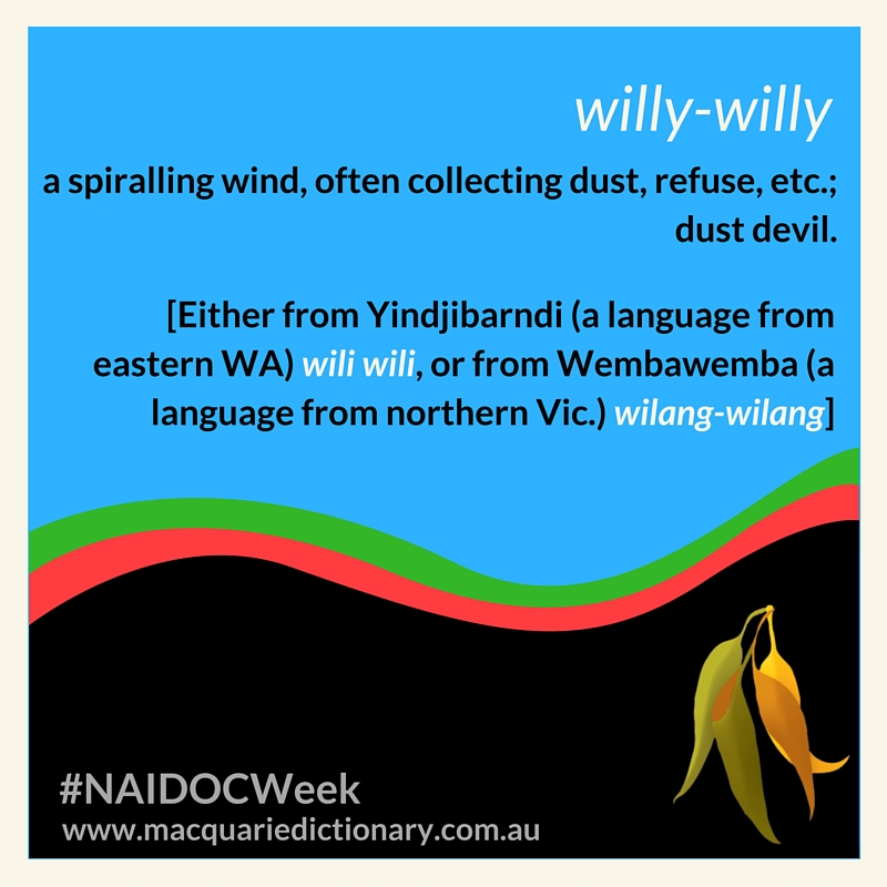 a spiralling wind, often collecting dust, refuse, etc.; dust devil.  [Either from Yindjibarndi (a language from eastern WA) wili wili, or from Wembawemba (a language from northern Vic.) wilang-wilang]