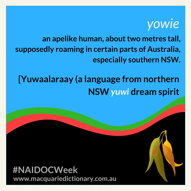 yowie an apelike human, about two metres tall, supposedly roaming in certain parts of Australia, especially southern NSW. [Yuwaalaraay (a language from northern NSW yuwi dream spirit