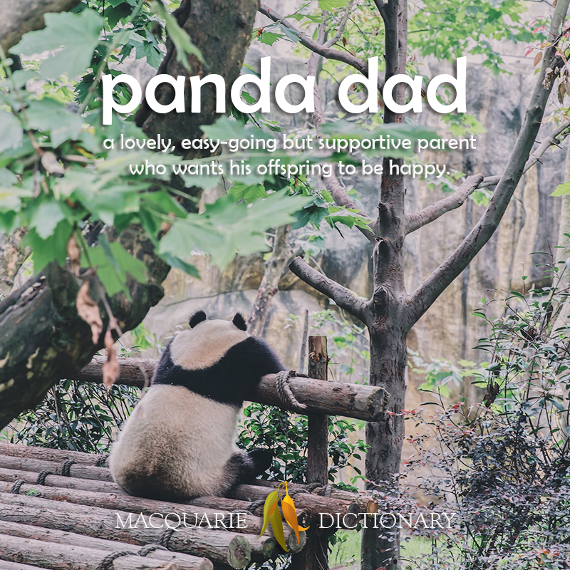 New words - panda dad - an easy-going but supportive parent who wants his offspring to be happy