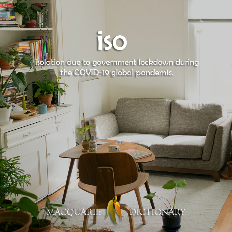 New words iso - isolation due to COVID-19