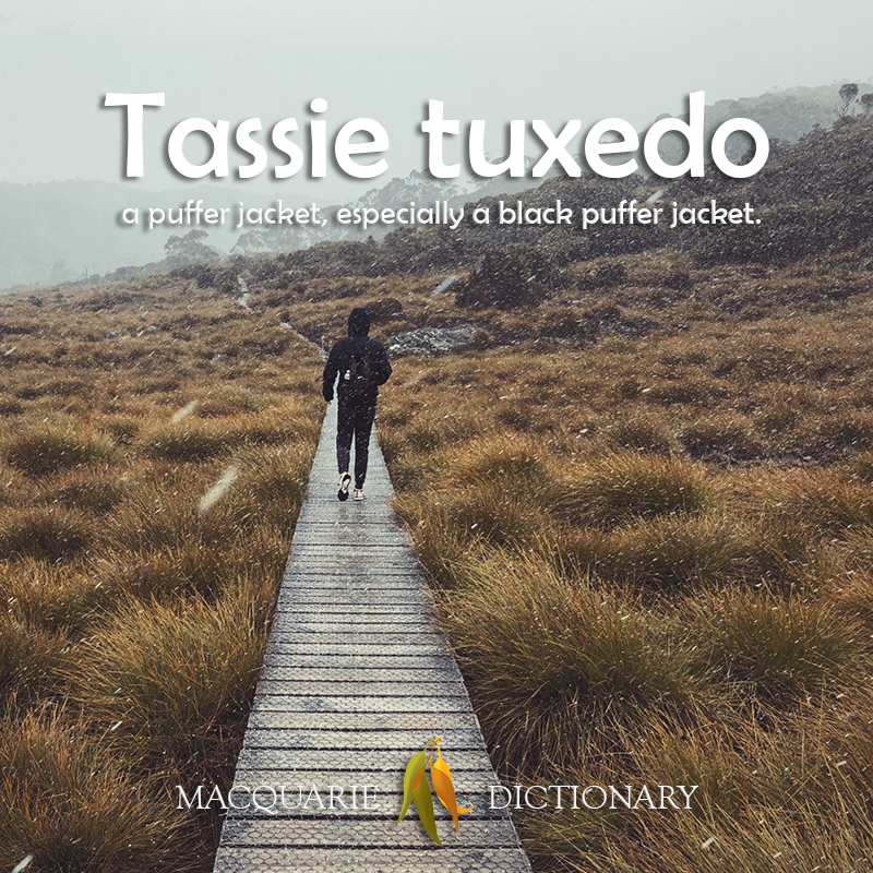 New words square - Tassie tuxedo - a puffer jacket, especially one black in colour