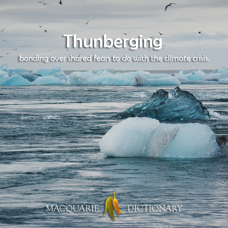 Thunberging - bonding over shared fears to do with the climate crisis