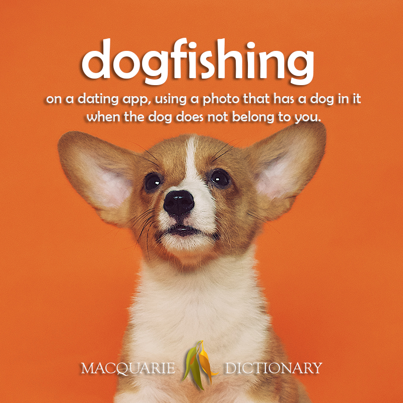 New words - dog fishing	on a dating app, using a photo that has a dog in it ...but the dog does not belong to you