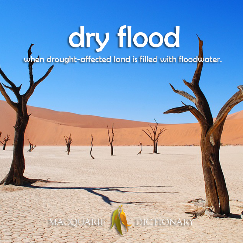 Image of definition of dry flood: when drought-affected land is filled with floodwater.
