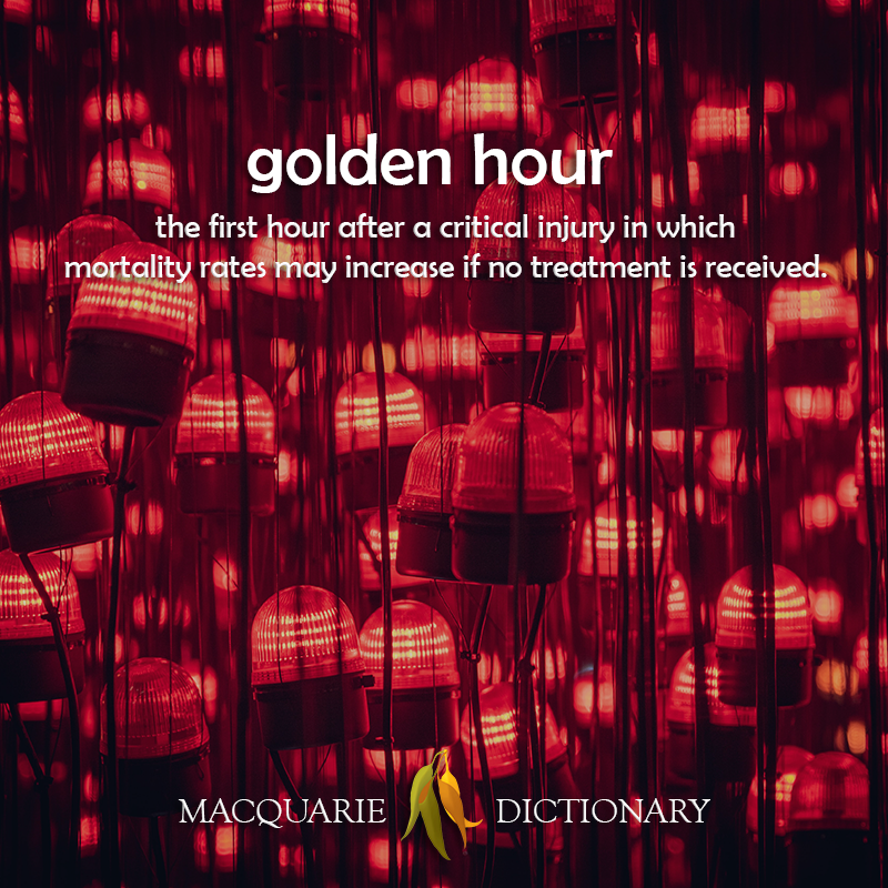 golden hour - the first hour after a critical injury in which mortality rates may increase if no treatment is received