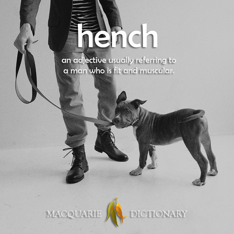 New words square - hench - an adjective usually referring to a man who is fit and muscular