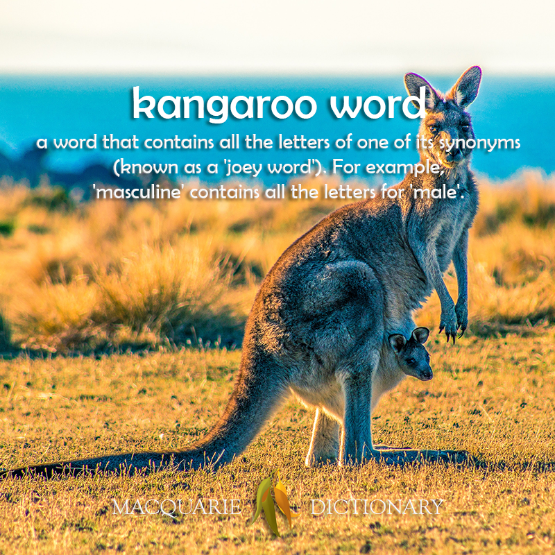 kangaroo word - a word that contains all the letters of one of it's synonyms