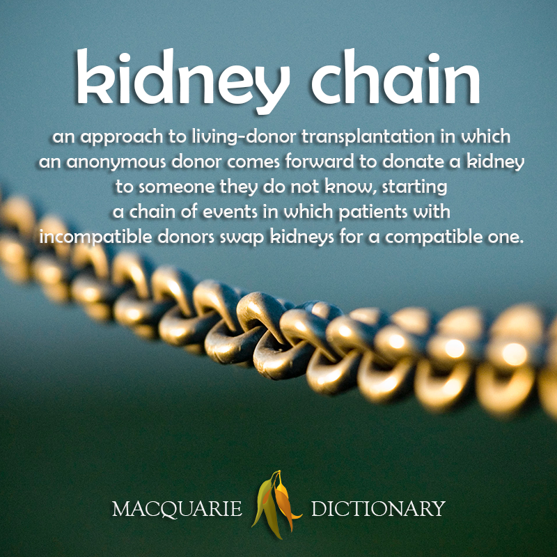 New words to watch kidney chain