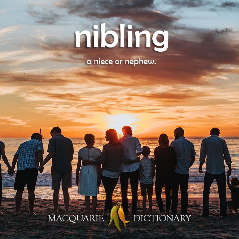 nibling - a niece or nephew