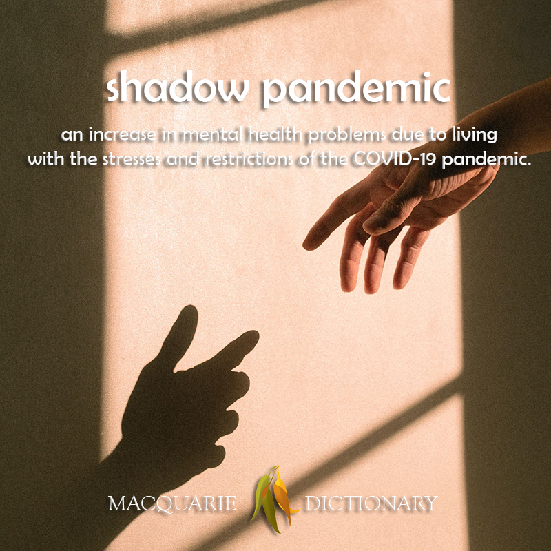 shadow pandemic - an increase in mental health problems due to living with the stresses and restrictions of the COVID-19 pandemic