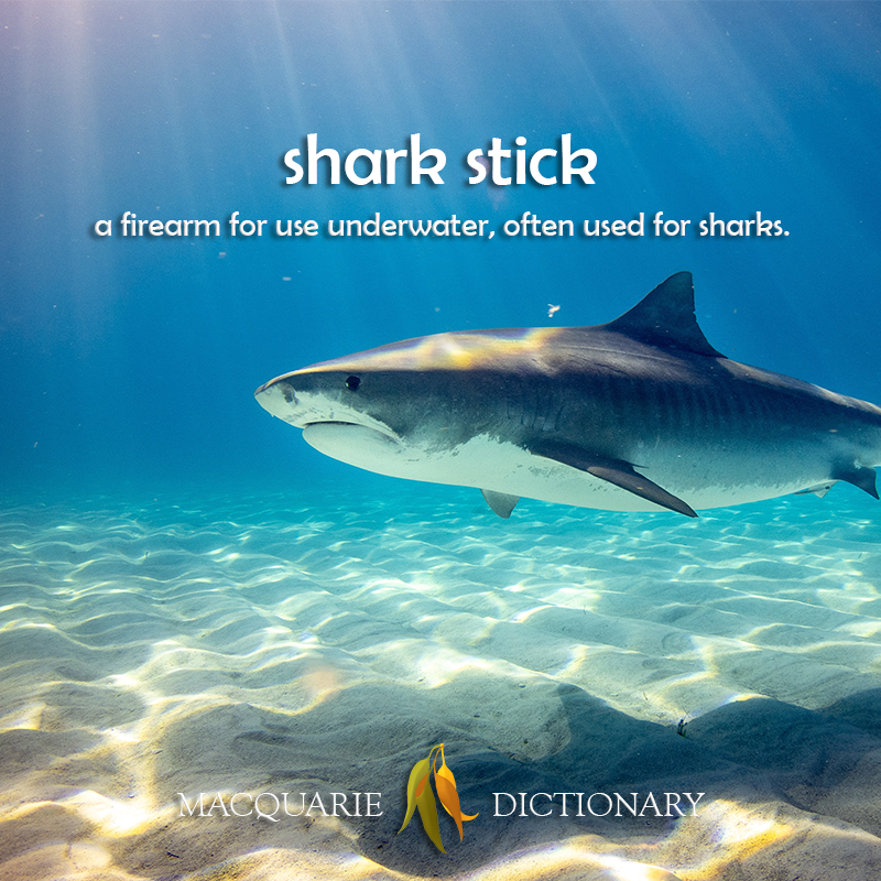 shark stick - a firearm for use underwater, often used for sharks