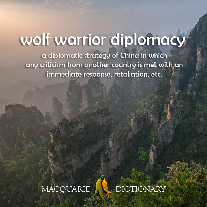 wolf warrior diplomacy - a diplomatic strategy of China in which any criticism from another country is met with an immediate response, retaliation, etc