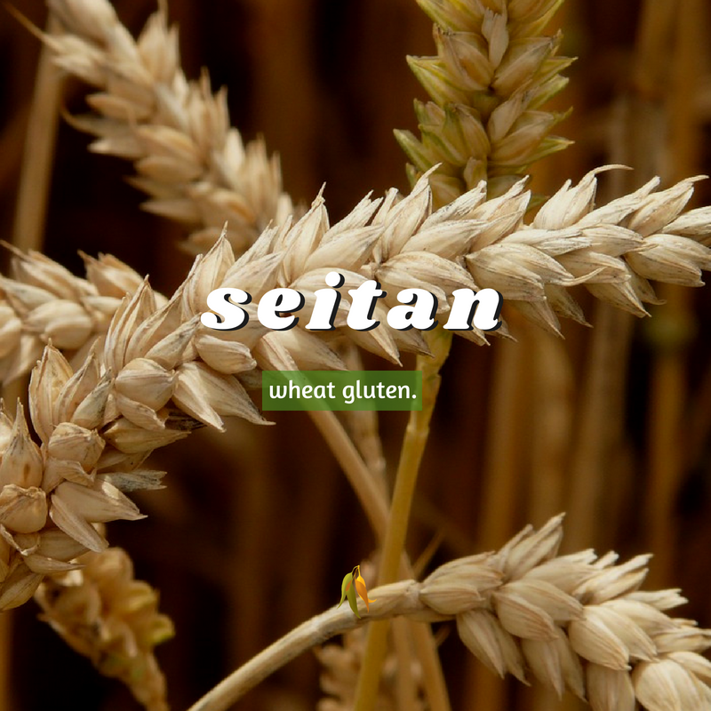 Macquarie Dictionary-seitan-wheat gluten.