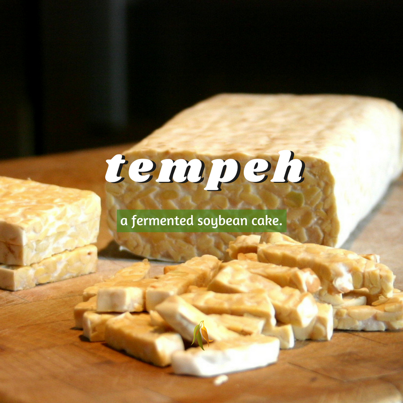 Macquarie Dictionary-tempeh-a fermented soybean cake.