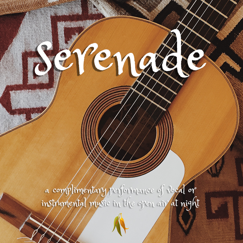 serenade - a complimentary performance of vocal or instrumental music in the open air at night, as by a man under the window of his lover.