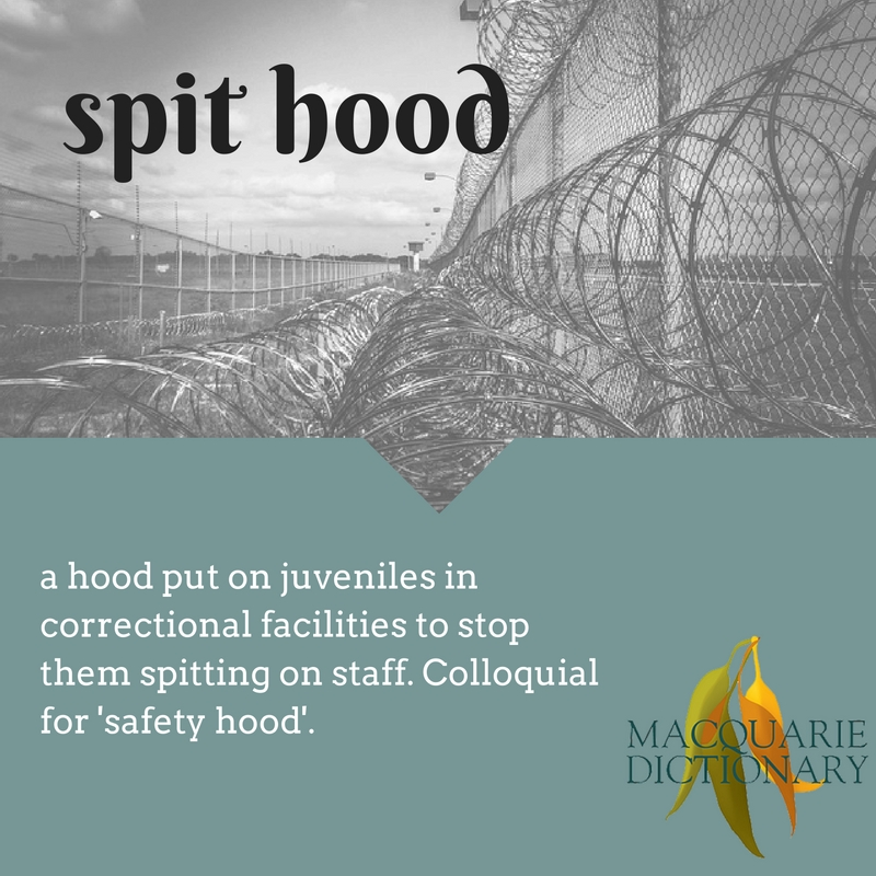 spit hood a hood put on juveniles in correctional facilities to stop them spitting on staff. Colloquial for 'safety hood'.