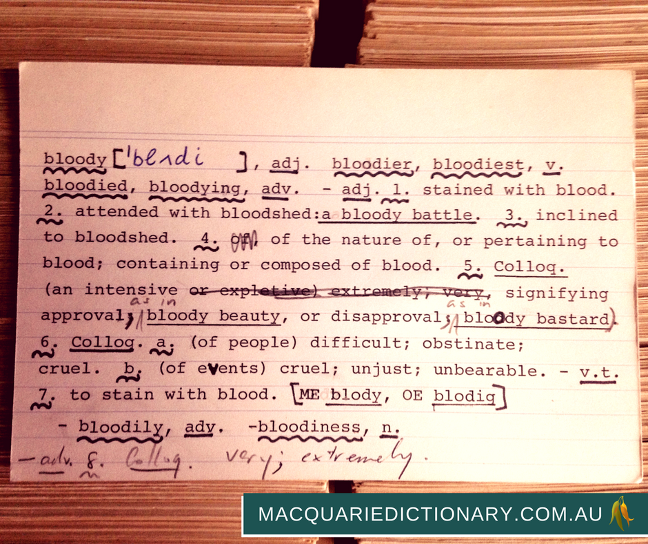 macquarie dictionary card catalogue bloody