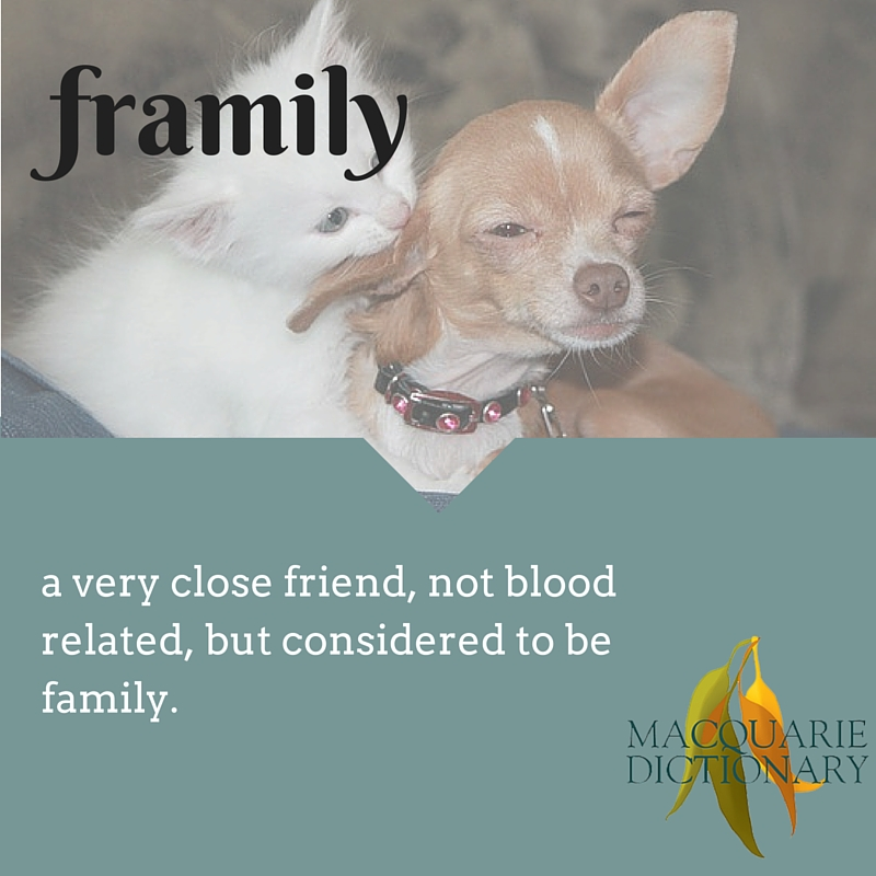 framily A very close friend, not blood related, but considered to be family