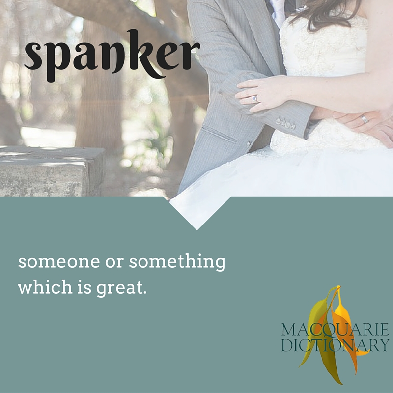 spanker someone or something which is great