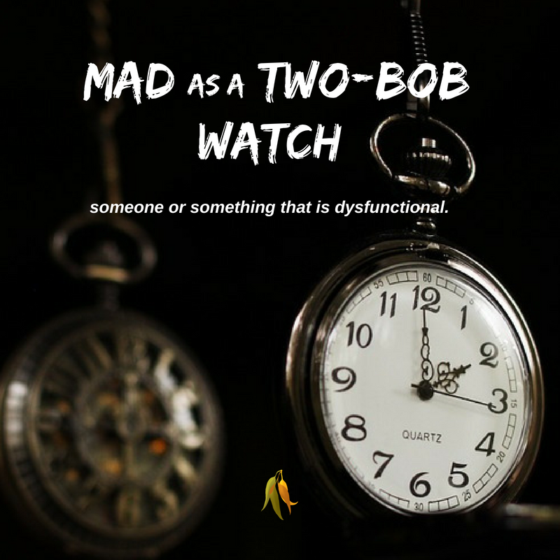 Macquarie Dictionary-Mad as a two-bob watch-A two bob watch is a cheap and crappy watch, literally, one that only cost two bob