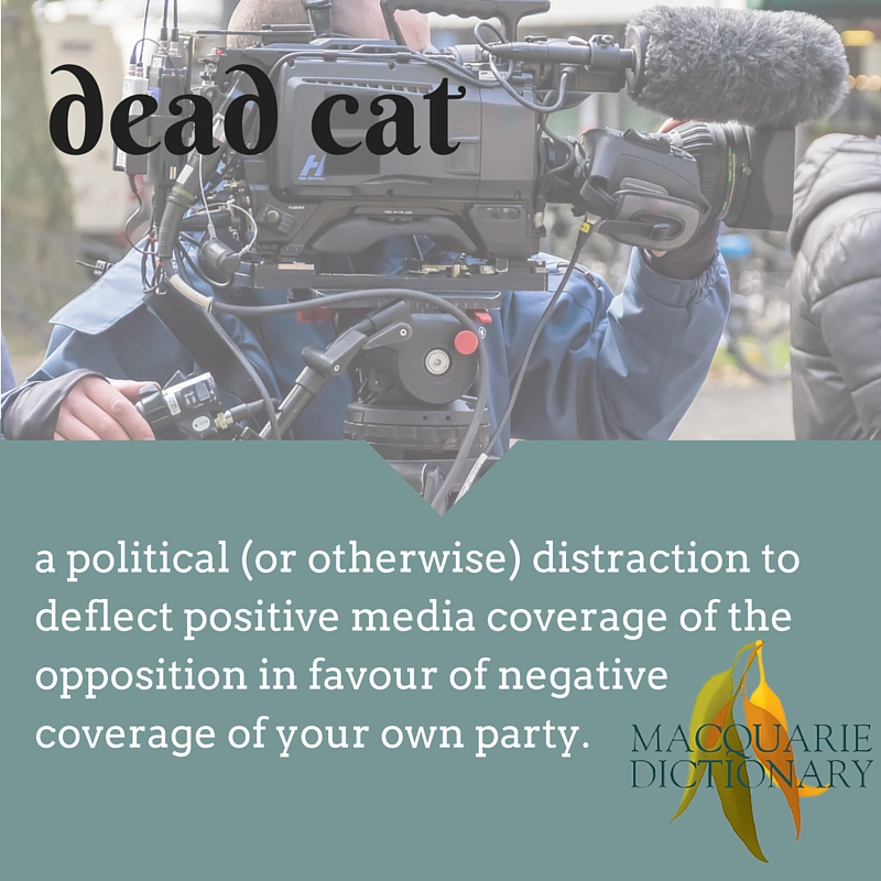 dead cat - a political (or otherwise) distraction to deflect positive media coverage of the opposition in favour of negative coverage of your own party