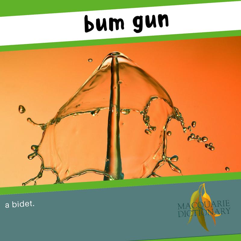Macquarie Dictionary new words - bum gun - a bidet